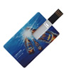 USB Flash Drive flip card